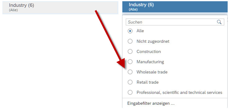 Drop-Down Eingabefilter